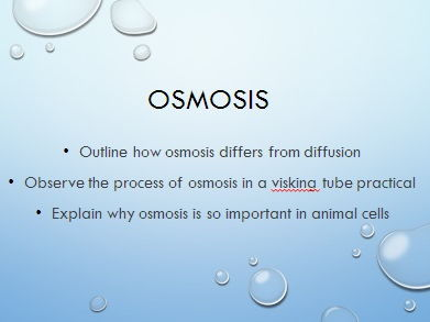 Osmosis required practical AQA GCSE Biology