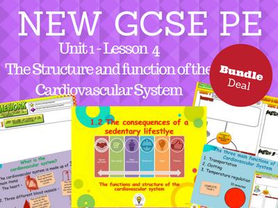 NEW Edexcel GCSE PE Unit 1 - Topic 1.2 - Cardiovascular System Lesson 1 BUNDLE