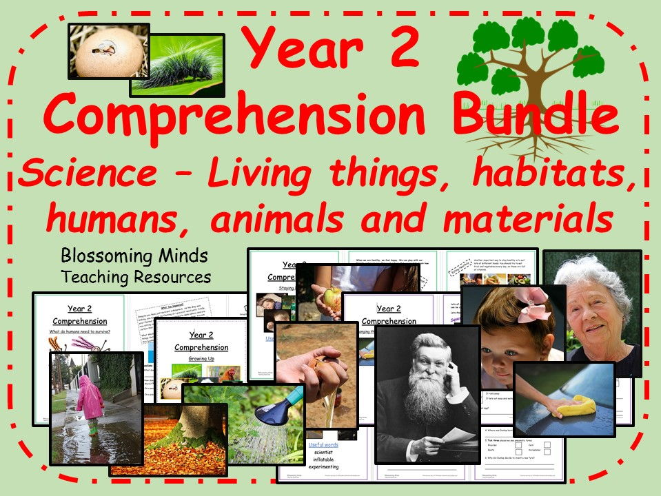 Year 2 Reading Comprehension Mega-Bundle - Science