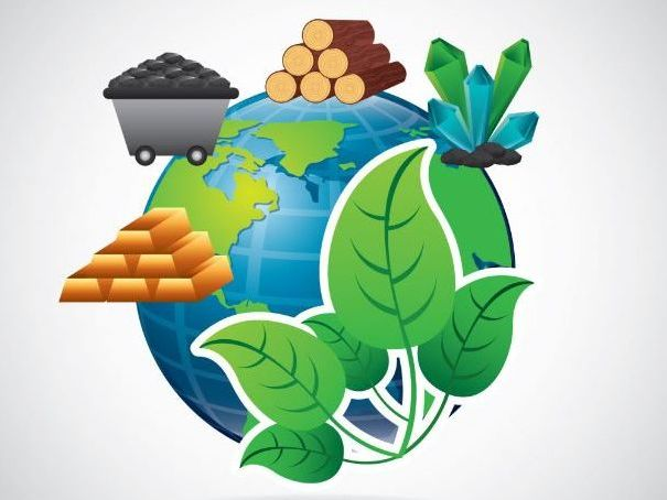 Earth's Resources: Food
