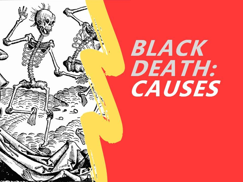Causes of the Black Death