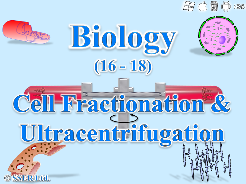3.2.1.3 Studying Cells 4 - Cell Fractionation & Ultracentrifugation