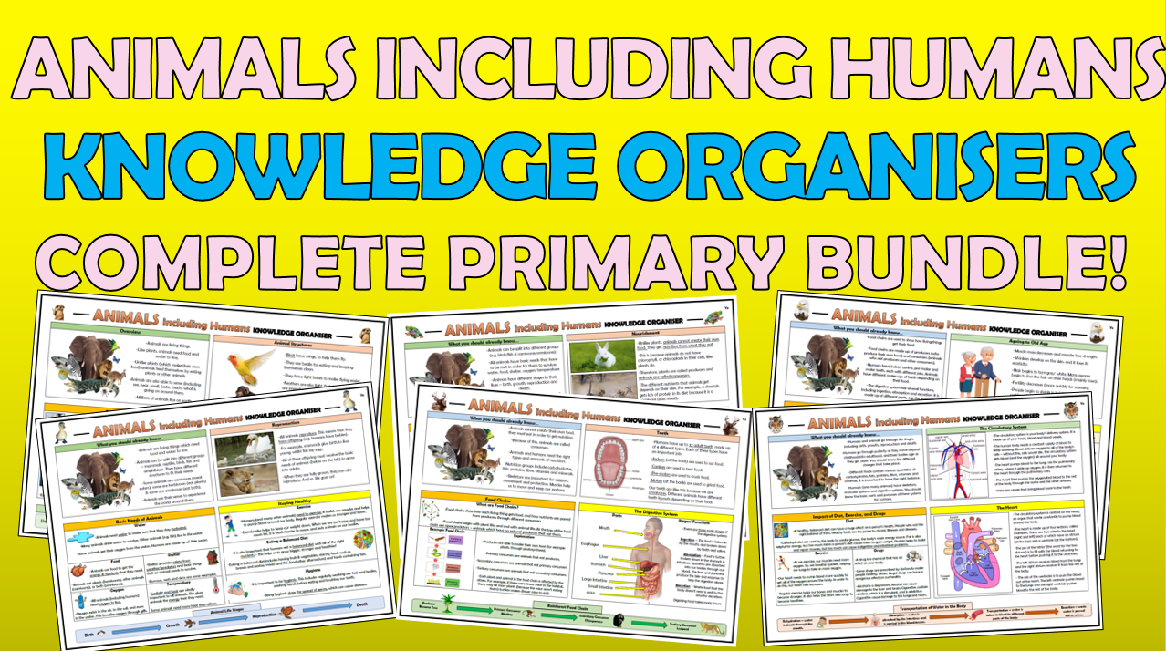 Animals including Humans Knowledge Organisers - Complete Primary Science Bundle!