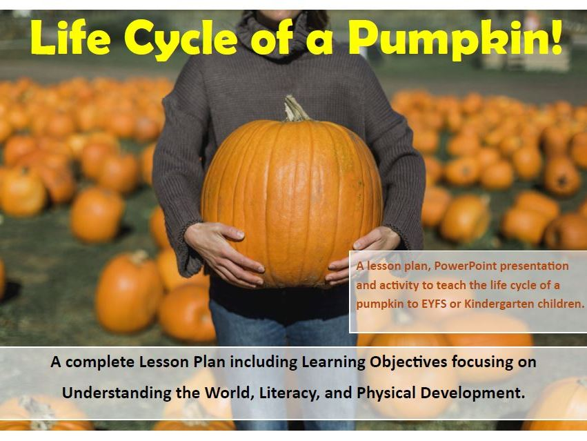 Halloween Pumpkin Life Cycle Resource Pack Teaching Resources