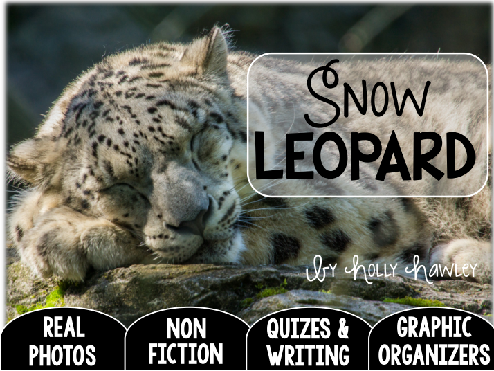Snow Leopard-A Research Project-UK Version