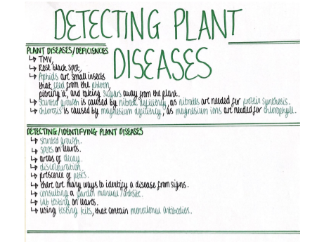 Detecting Plant Diseases (Infection & Response) Revision Poster [AQA GCSE Biology Triple 9-1]
