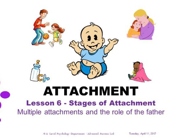 Powerpoint - Attachment - Lesson 6 - Multiple attachments and the role of the father