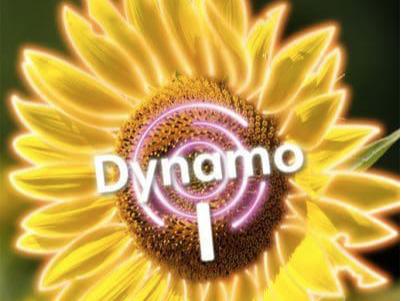Dynamo 1 Tangled Translations Bundle