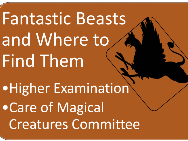 Magical creatures and how to care for them examination