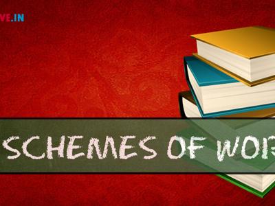 History - Scheme of Work of Year 10 (IGCSE)  - Development of dictatorship: Germany, 1918-45