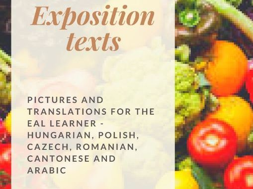 EXPOSITION WRITING (includes bilingual key words and pictures for the EAL learner)