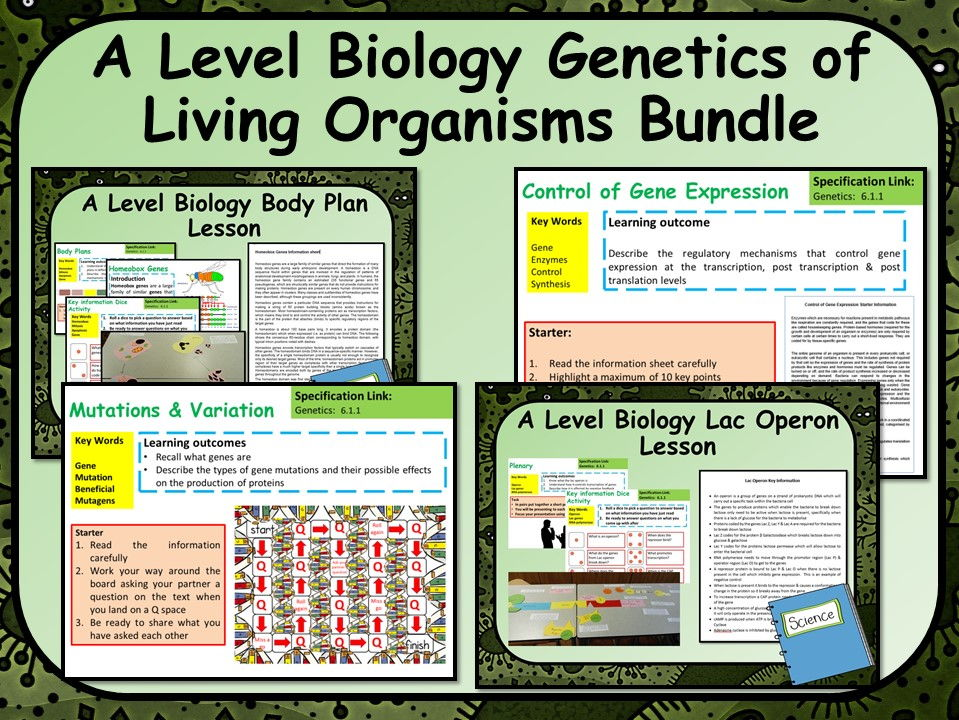 A Level Biology Genetics of Living Organisms Bundle | Teaching Resources