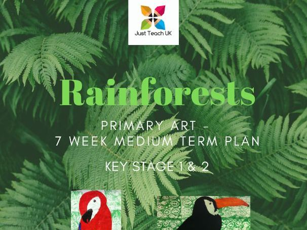 Rainforests themed Art Planning - 7 weeks - KS1 & KS2