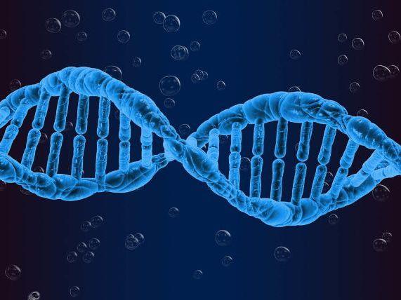 Genetics keywords GCSE