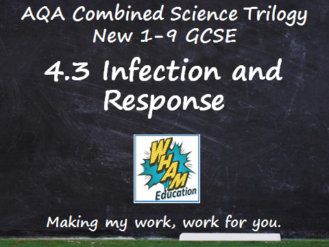 AQA Combined Science Trilogy: 4.3 Infection and Response Quiz