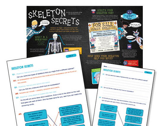 Year 3 skeleton secrets guided reading