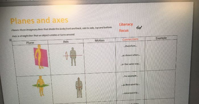 Planes and Axes GCSE PE worksheet