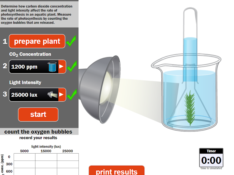 Limiting Factors of Photosynthesis Virtual Practical and Worksheets
