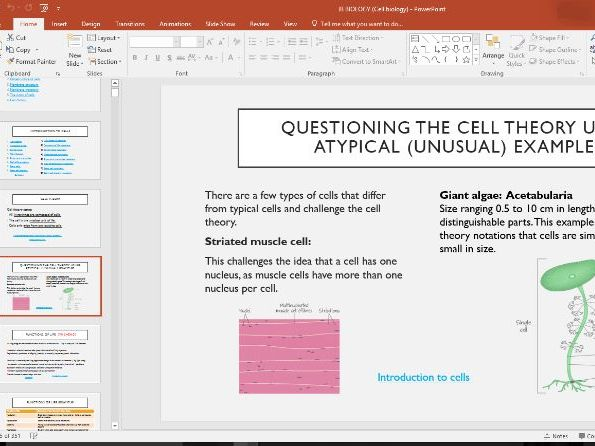 International Baccalaureate Biology- Cell Biology Powerpoint (350 slides!!)
