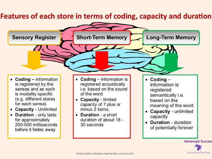 Poster - Memory - Features of each store in terms of coding capacity and duration