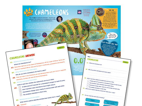 Year 4 Science Reading:Chameleons
