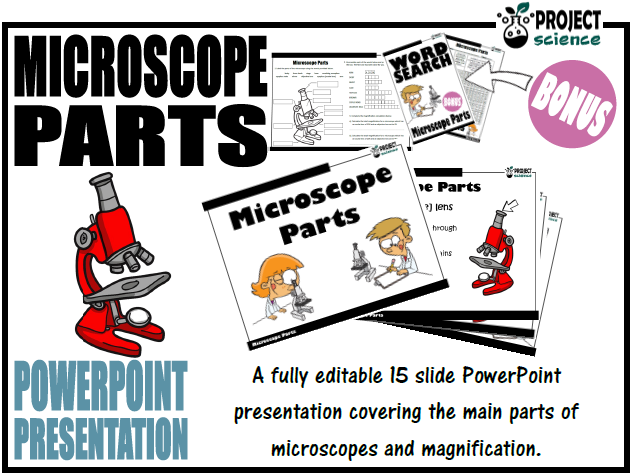 Microscope Parts PowerPoint Presentation and Activity Sheets