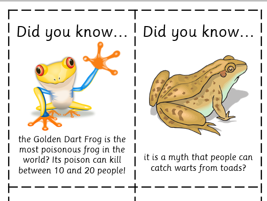 Fun Fact Cards: Amphibians