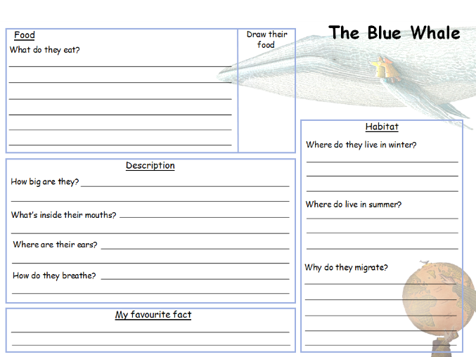 Blue Whale Fact Recording Sheet