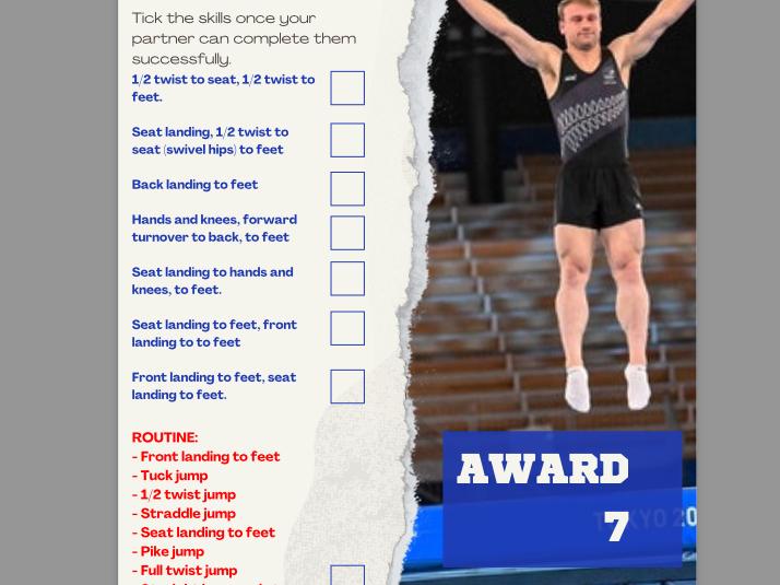 Trampolining Awards - Peer Reviews