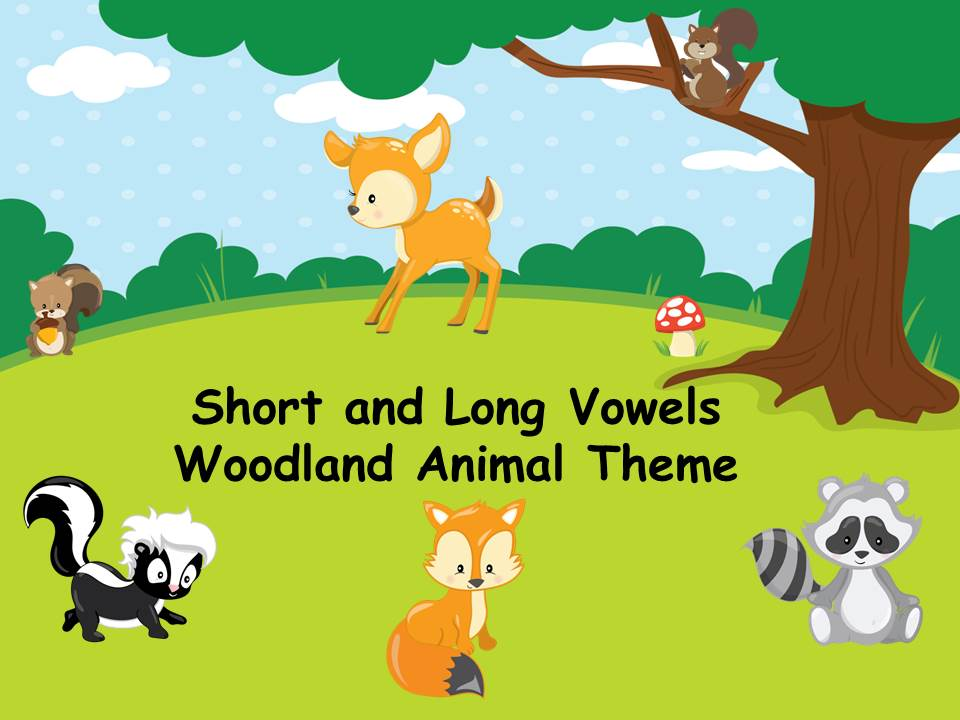 Long and Short Vowels-Woodland Animal Theme