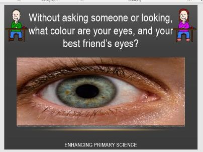 VARIATION (PUPILS EYE COLOUR)