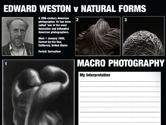 Macro Photography - Edward Weston and Natural Forms