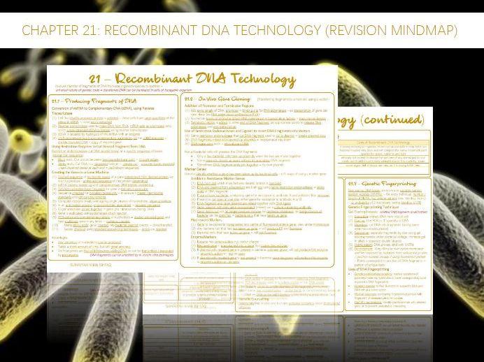 AQA A-Level - Biology : 21 - Recombinant DNA Technology  (Revision Mindmap)