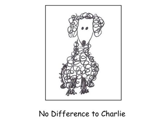 No Difference to Charlie by Regia Sargent  Illustrated by Carella Herberger