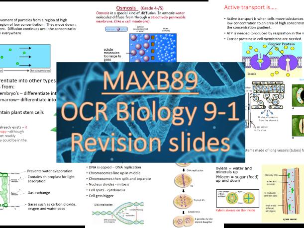 GCSE 9-1 Revision Biology OCR Unit 2 Revision Slides