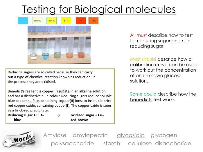 Alevel Biology, Benedicts test, Biuret PAG, colorimeter, reducing and non-reducing sugar lesson