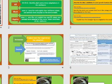 AQA 9-1 GCSE: How have Plants and Animals Adapted to the Rainforest?