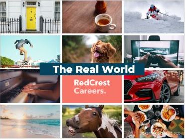 The Real World - Virtual Careers Lesson