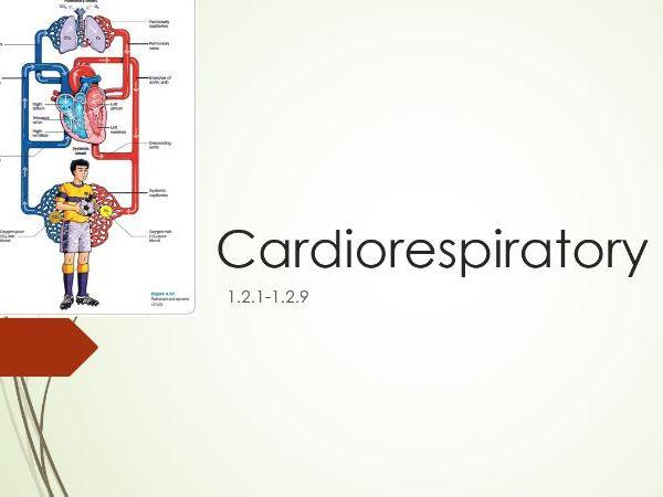 Cardiorespiratory system 1.2.1-1.2.9