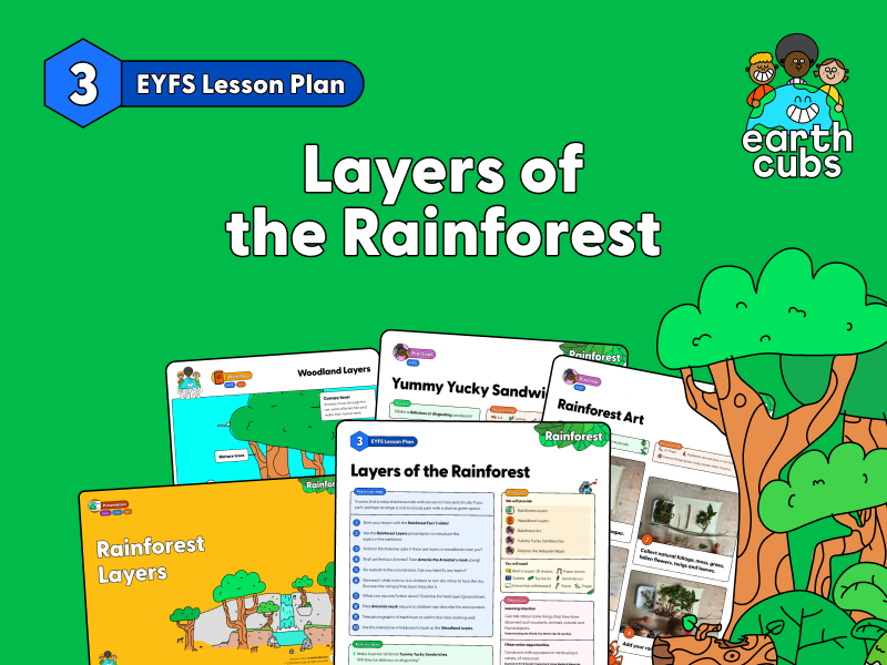 Layers of the Rainforest: EYFS Lesson Plan