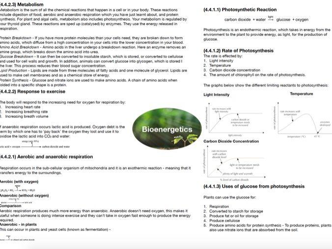 AQA GCSE Biology: Bioenergetics