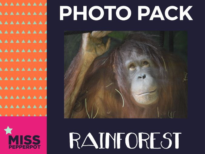 Rainforest Photo Resource Pack