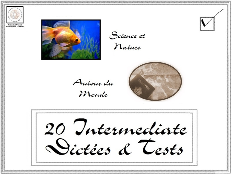 French: 20 Intermediate Dictées and Tests 2