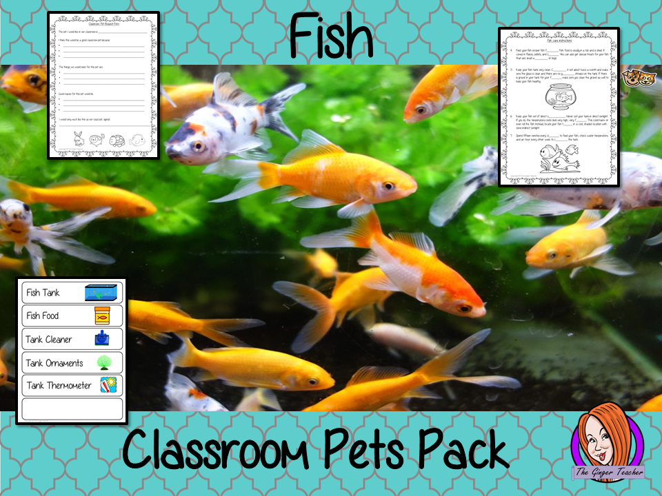 Fish Classroom Pets Pack