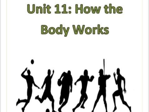 BTEC Level 1 Sport Workpack + PP Unit 11