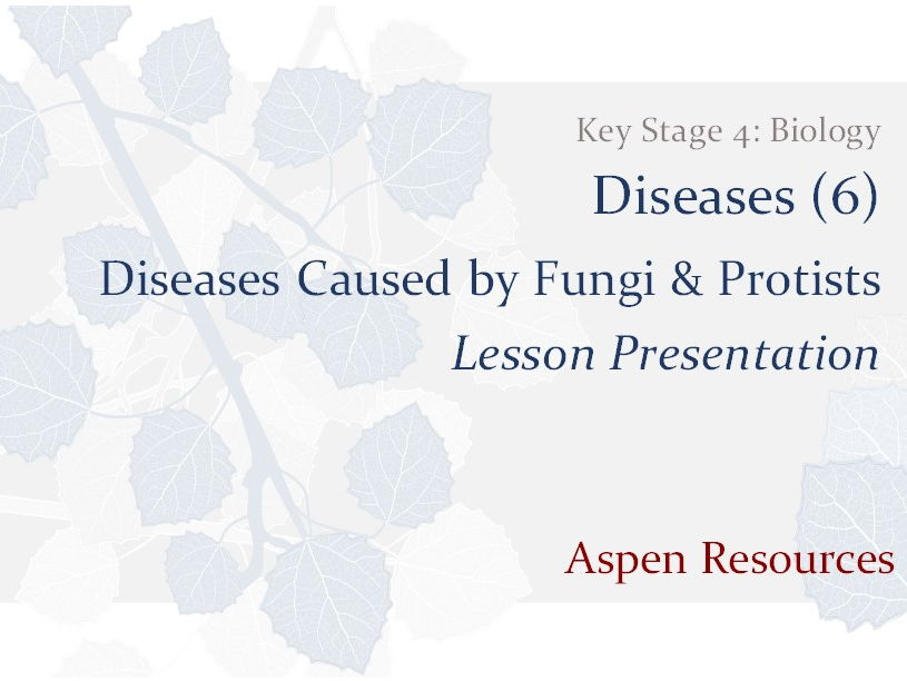 Diseases Caused by Fungi & Protists  ¦  KS4  ¦  Biology  ¦  Diseases (6)  ¦  Lesson Presentation