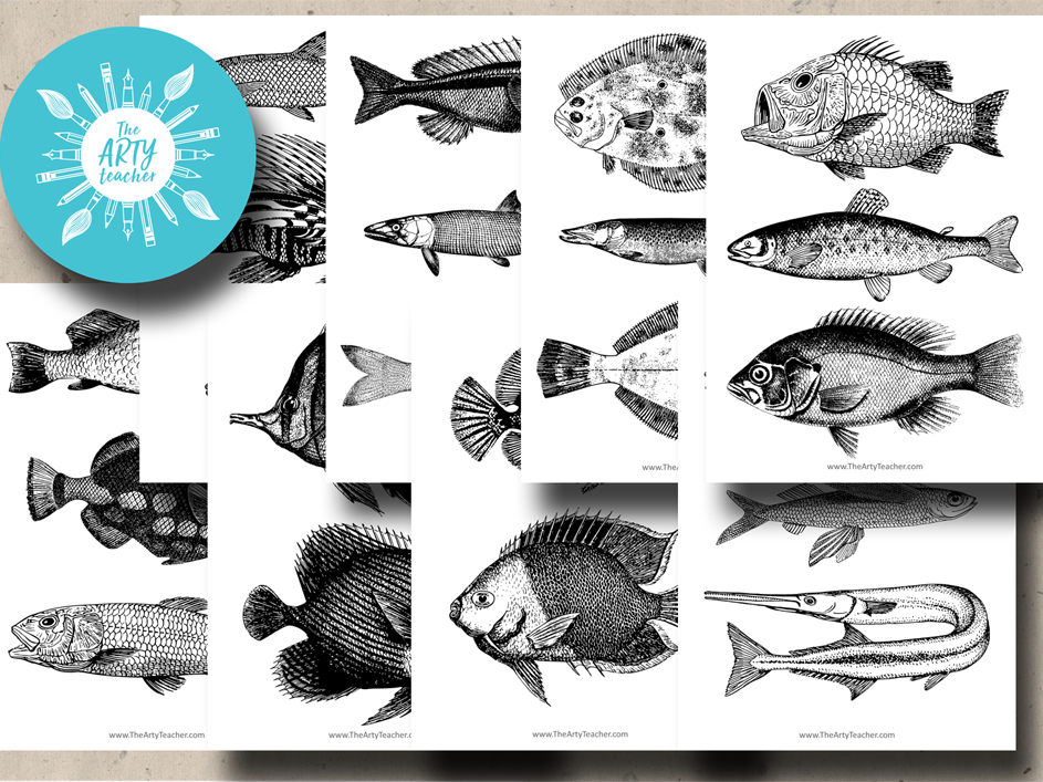 Fish Images - Black & White - Great for Drawing Skills