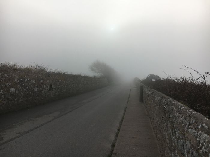 Weather: A Foggy Day: Photo Collection