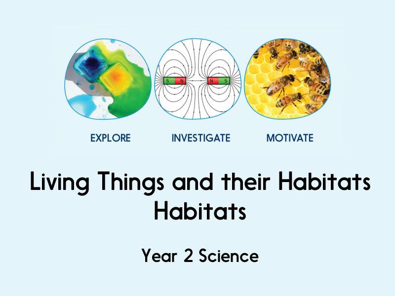 Living Things and their Habitats - Habitats - Year 2