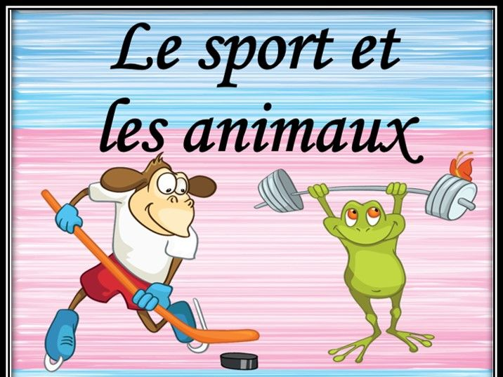 Sport and animals in French.  Matching game.